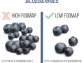 Create-Your-Own-FODMAP-Diet-agutsygirl.com-fodmap-sibo-fodmapdiet-Blueberries