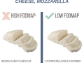 Create-Your-Own-FODMAP-Diet-agutsygirl.com-fodmap-sibo-fodmapdiet-cheese-mozzarella
