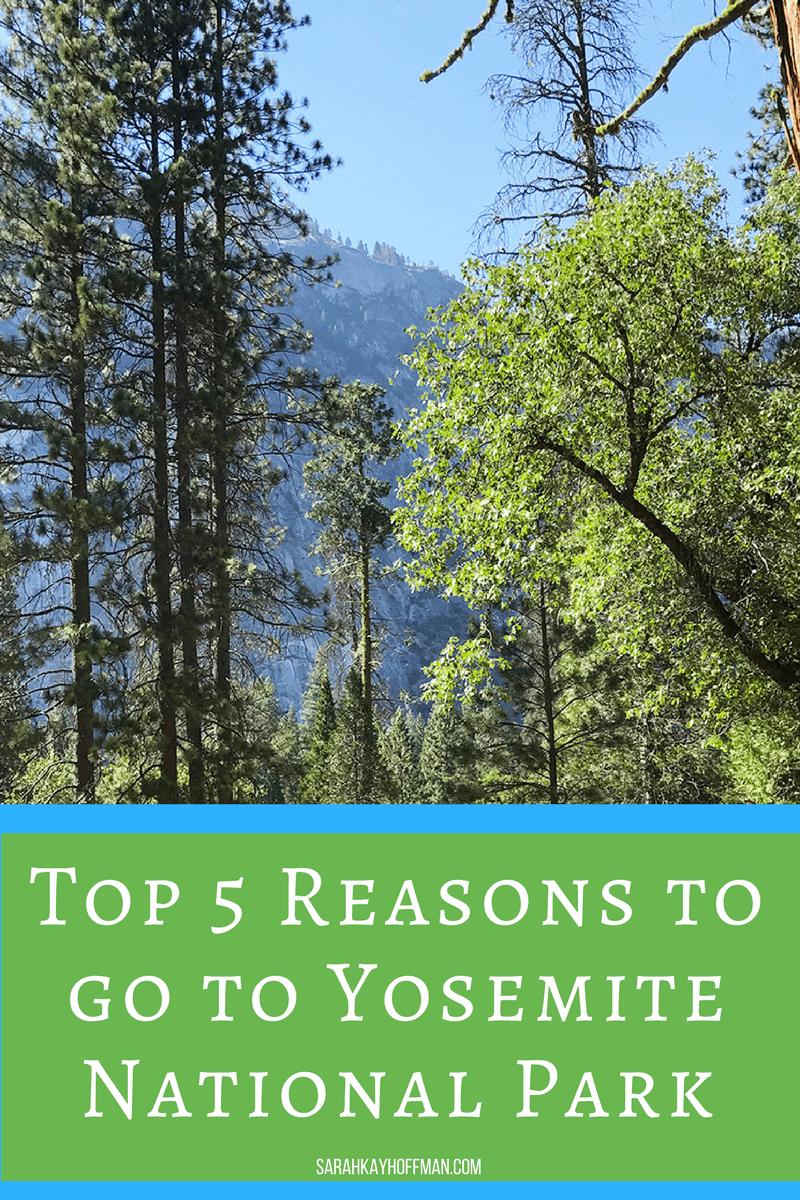 Top 5 Reasons to go to Yosemite National Park sarahkayhoffman.com