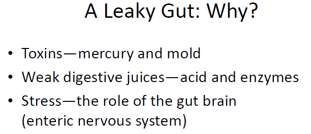 A Leaky Gut: Why? 13 Favorite Pieces of Gut Information sarahkayhoffman.com