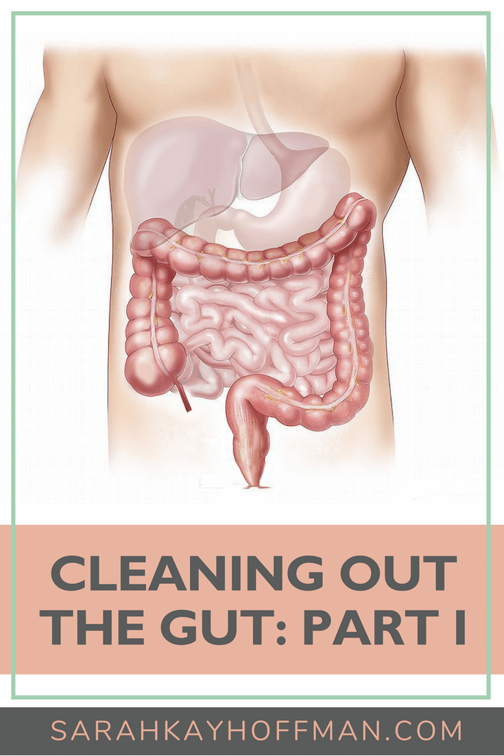 Cleaning Out the Gut Part I www.sarahkayhoffman.com #guthealth #healthyliving #healthcoach #ibs #ibd