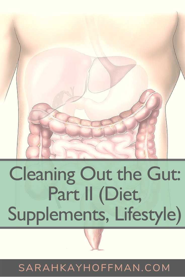 Cleaning Out the Gut Part II Diet, Supplements, Lifestyle www.sarahkayhoffman.com #guthealth #healthyliving #ibs #ibd