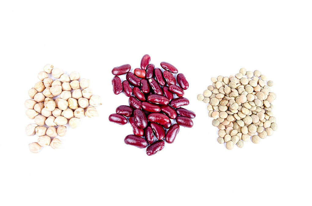 How to Digest Beans sarahkayhoffman.com