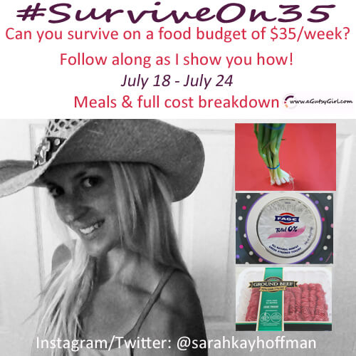 Can You Survive on 35 Dollars for One Week sarahkayhoffman.com