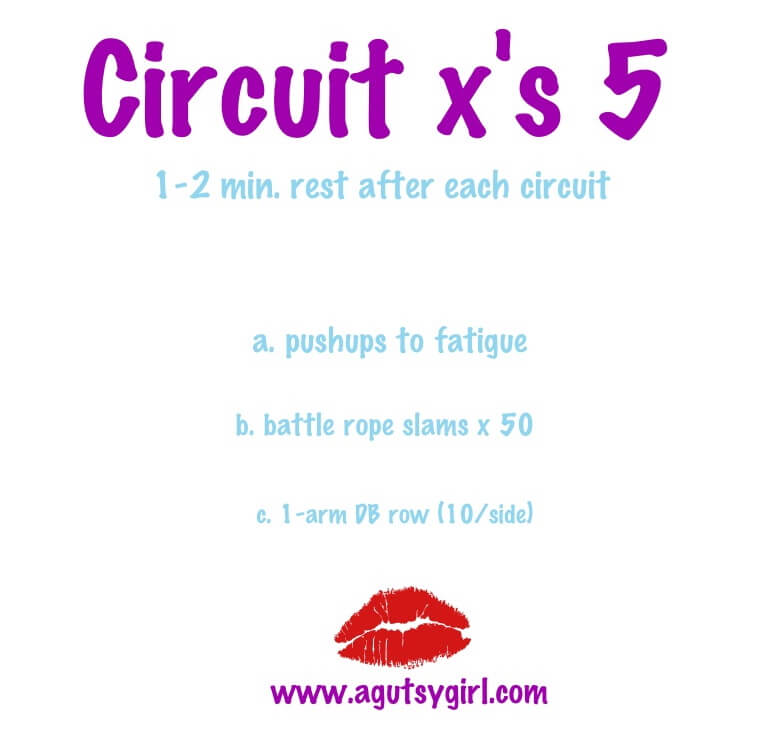 Circuit x's 5, Battle Ropes Workouts Past Present and Future sarahkayhoffman.com