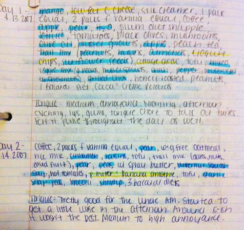 Digestion Food Journaling sarahkayhoffman.com