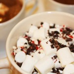 Peppermint Hot Cocoa Toppings