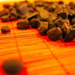 Chocolate Port'rettes