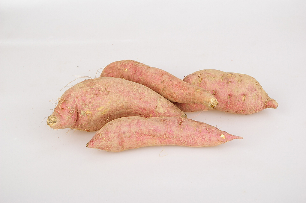 5 reasons you might not be able to digest sweet potatoes sarahkayhoffman.com