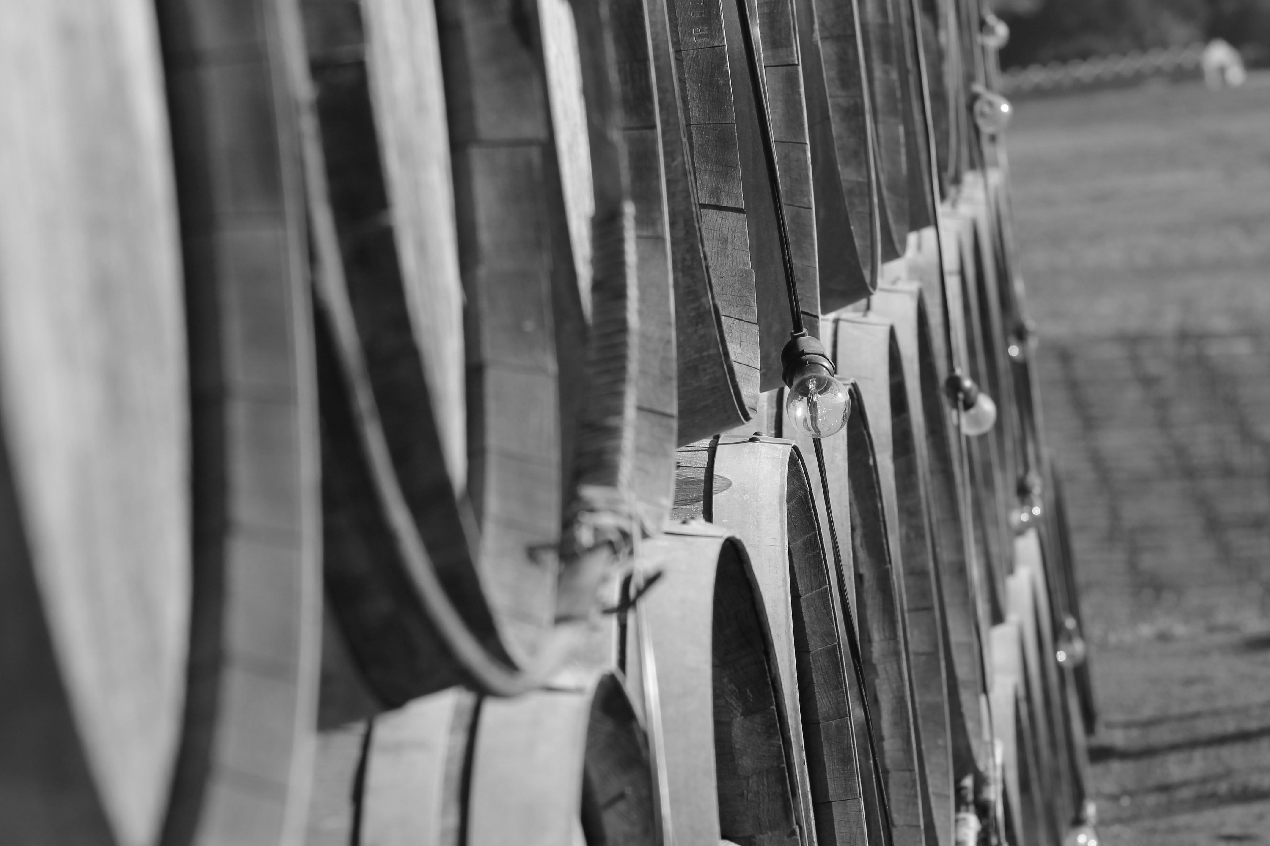 SCRIBE Winery sarahkayhoffman.com wine barrels