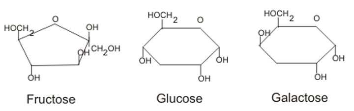 Monosaccharide Structure
