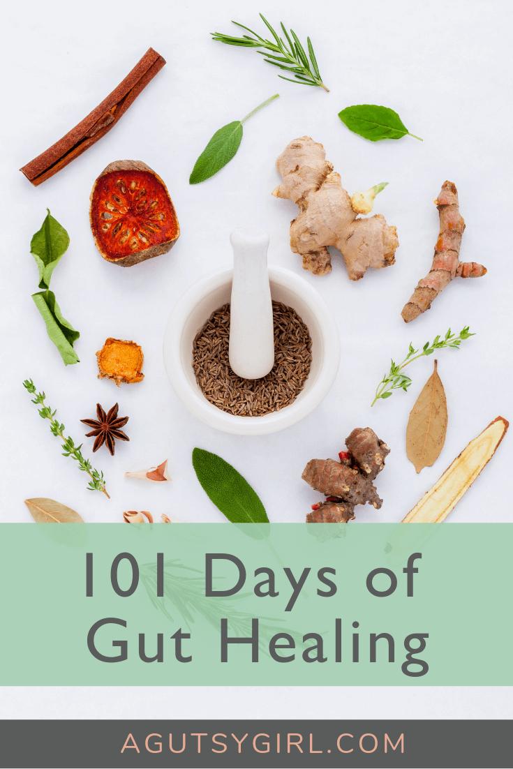 101 Days Healing gut agutsygirl.com #guthealth #guthealing #healthyliving