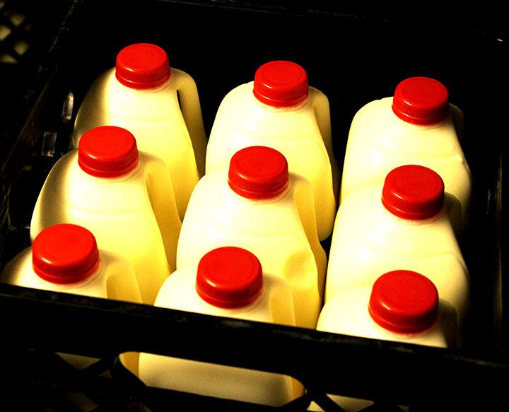 Raw Dairy Information sarahkayhoffman.com Cold Milk Jugs at Organic Pastures