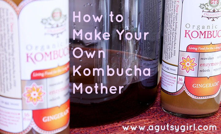 How to Make Your Own Kombucha Mother via www.agutsygirl.com