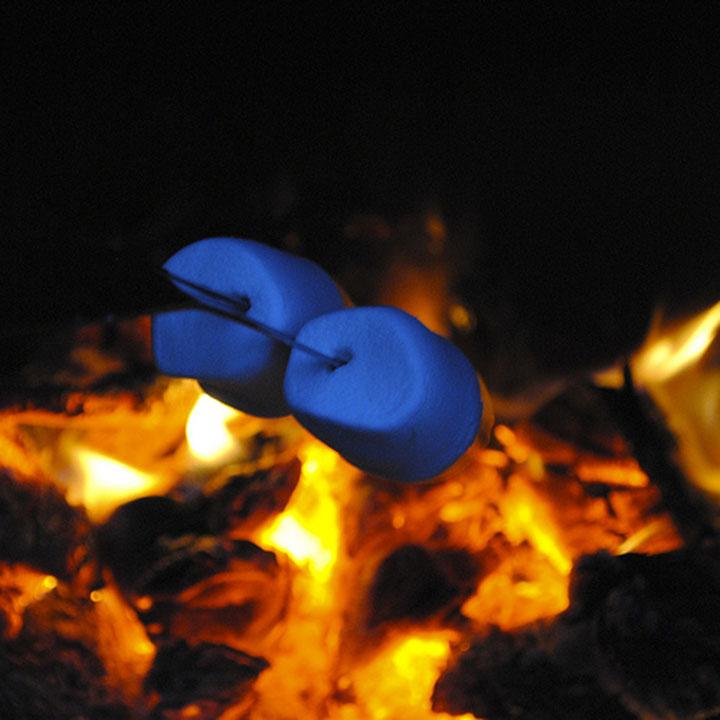 campfire s'more