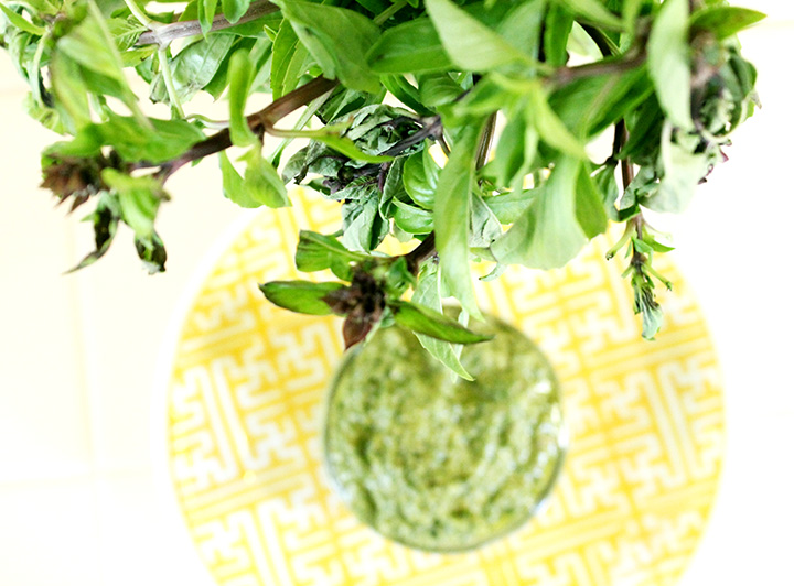 How to make homemade Basil and Arugula Lemon Pesto {gluten free, dairy free, sugar free} #unprocessed www.agutsygirl.com