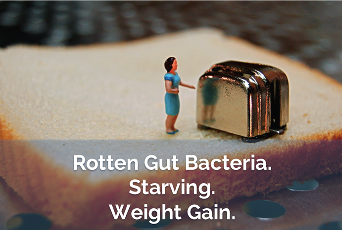 Rotten Gut Bacteria Starving Weight Gain via www.agutsygirl.com