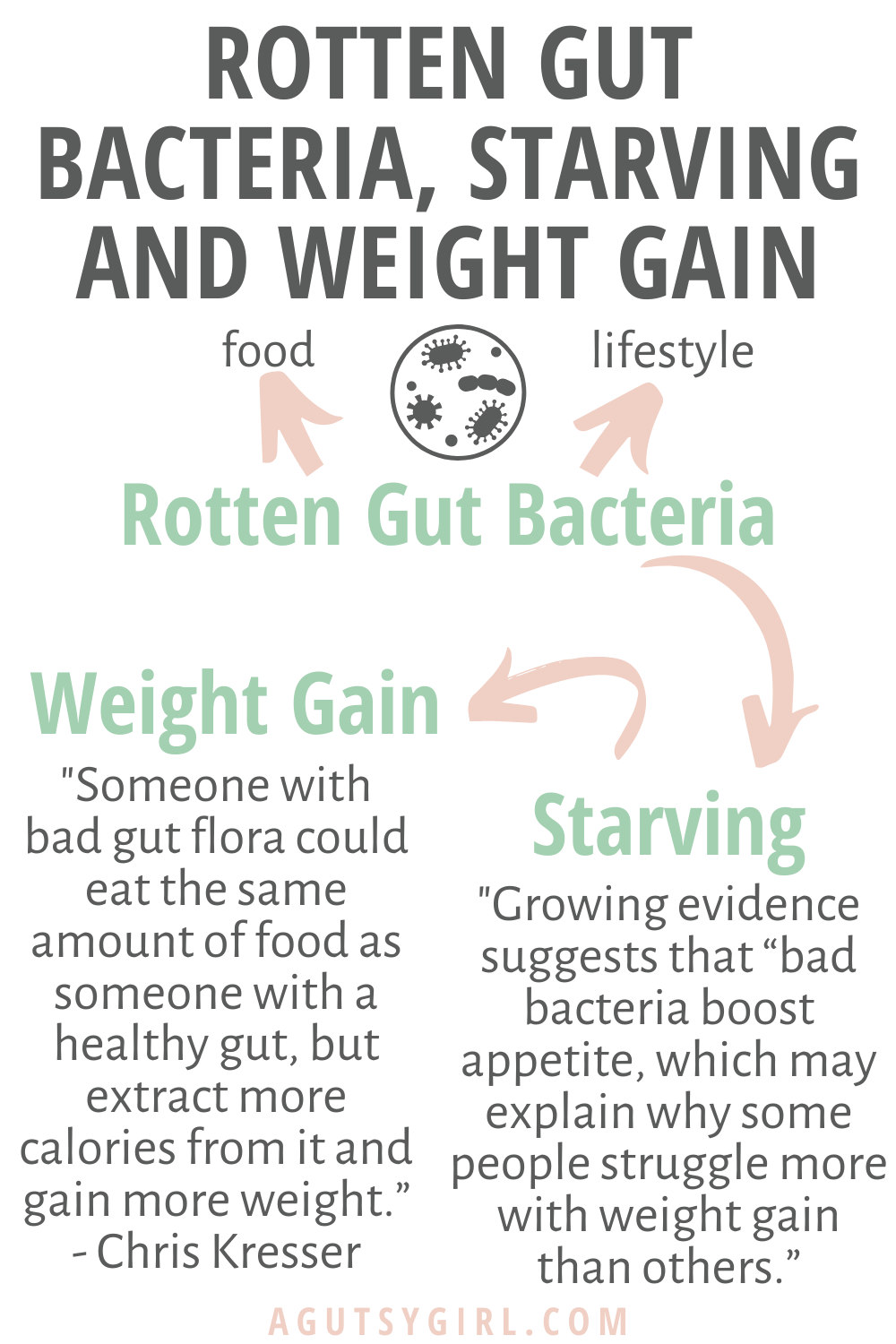 Rotten Gut Bacteria, Starving, and Weight Gain agutsygirl.com gut health #guthealth #weightgain #gutbacteria #IBS lifestyle