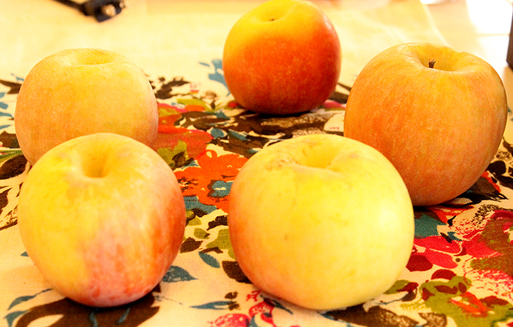 Whole Organic Apples for How to Make Easier-to-Digest Homemade, Slow-Cooked Applesauce www.agutsygirl.com