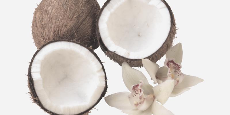 coconut milk featured