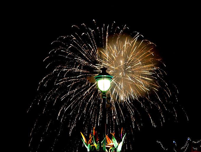 Disneyland Firewords via www.agutsygirl.com