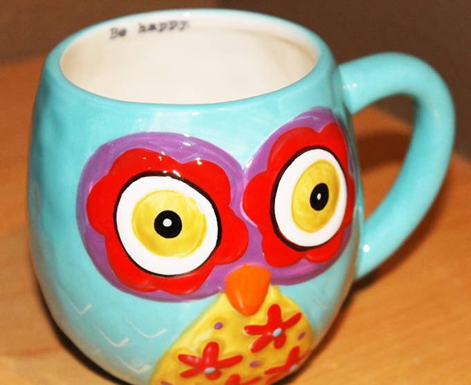 Owl Mug Broth Date www.agutsygirl.com