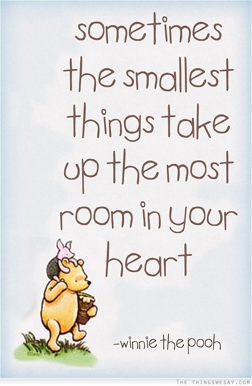 sometimes the smallest things take up the most room in your heart winnie the poo via www.agutsygirl.com
