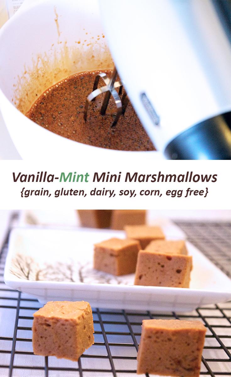 Vanilla Mint Mini Marshmallows for sarahkayhoffman.com