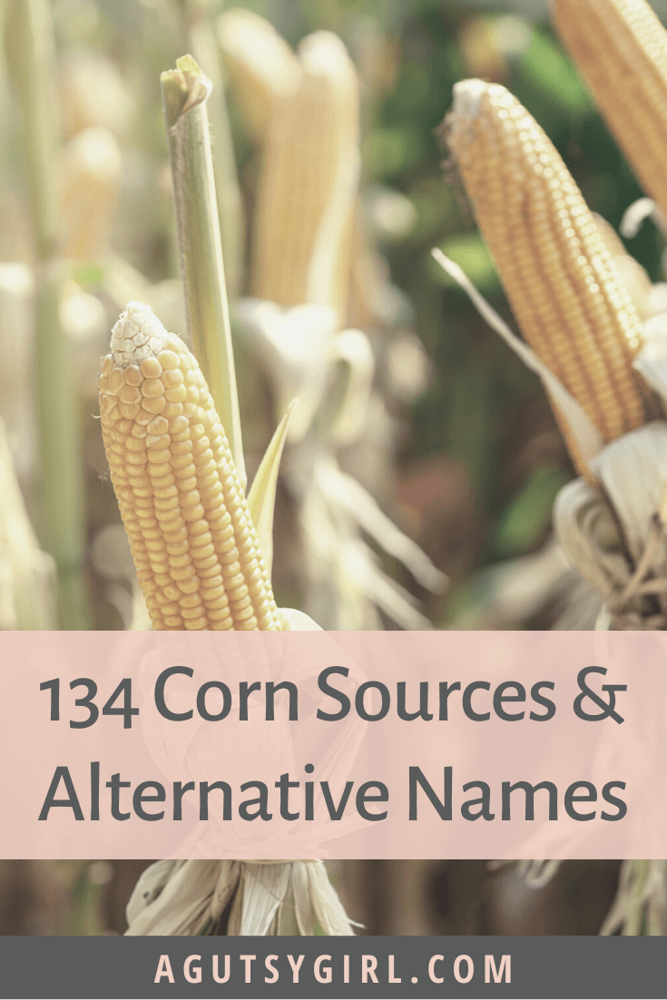 134 Corn Sources and Alternate Names agutsygirl.com #corn #guthealth #eliminationdiet