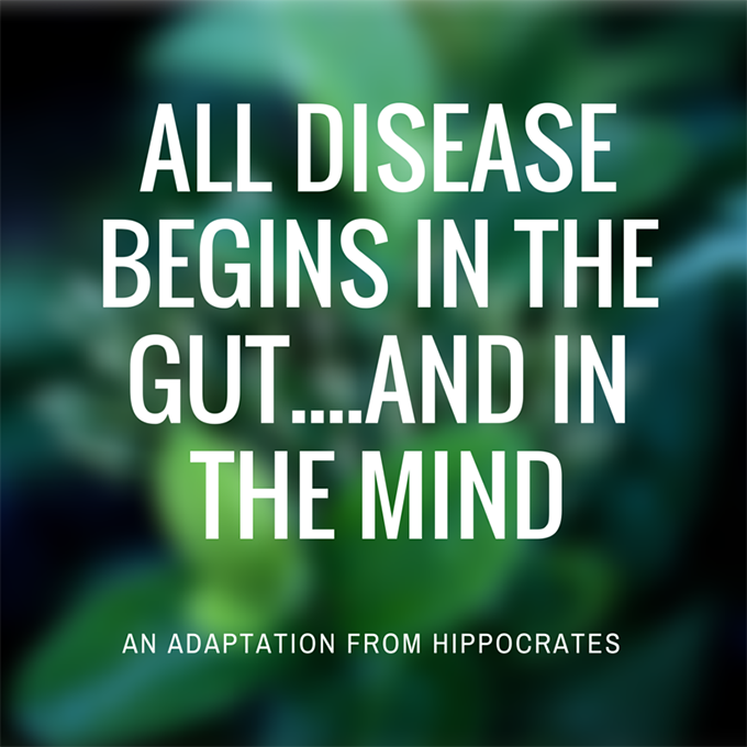 all disease begins in the gut....and in the mind. i'm healing. sarahkayhoffman.com