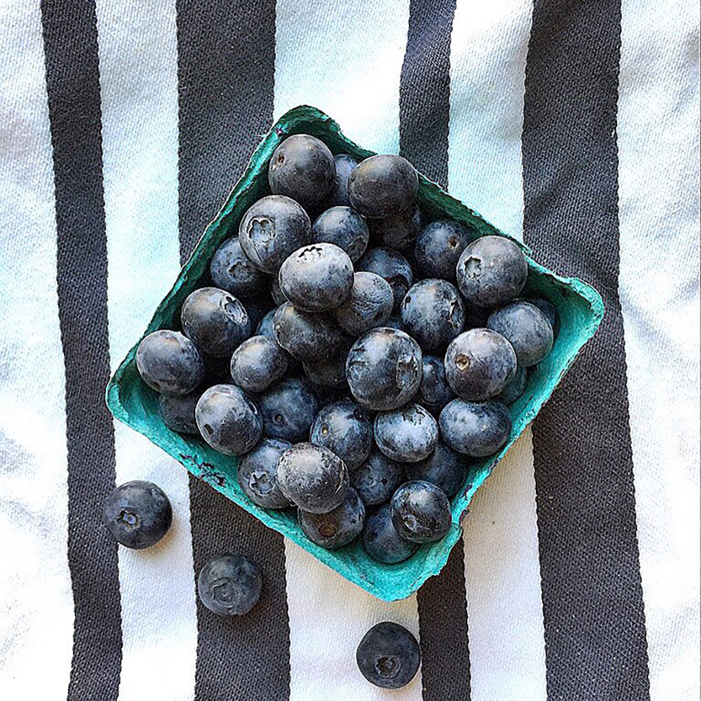 Farmers Market Blueberries. New Lease on Life sarahkayhoffman.com