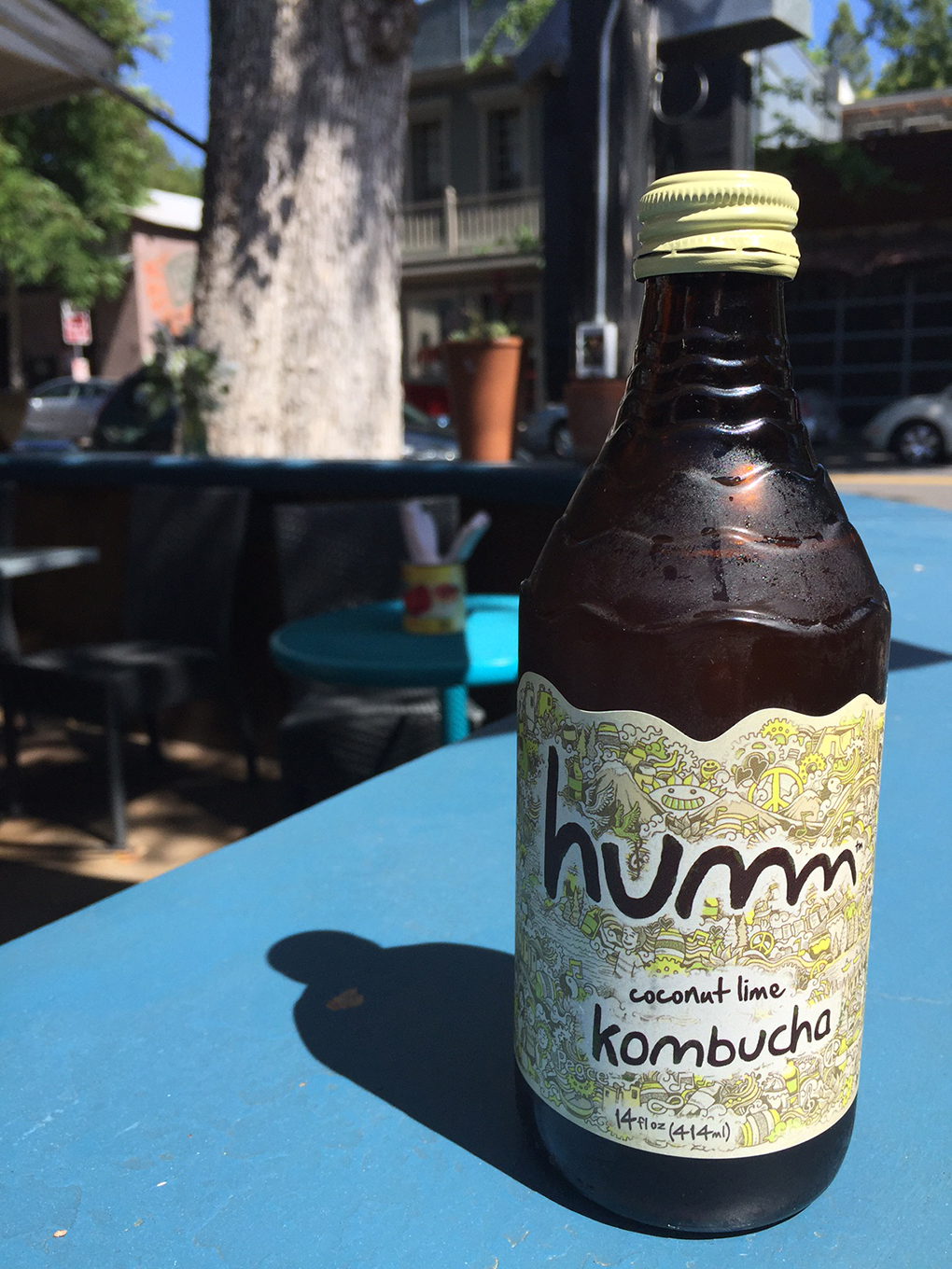 Humm Kombucha. New Lease on Life sarahkayhoffman.com