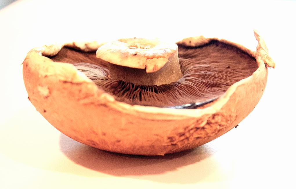 Mushroom and Spinach Turkey Burgers Paleo Portobello Mushroom Pizza Nutiva Portobello Mushroom sarahkayhoffman.com