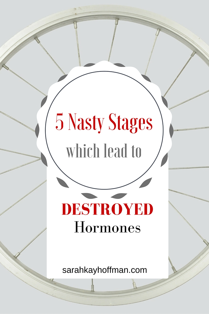 Destroyed Hormones, Part II The 5 Nasty Stages that lead to destroyed hormones sarahkayhoffman.com