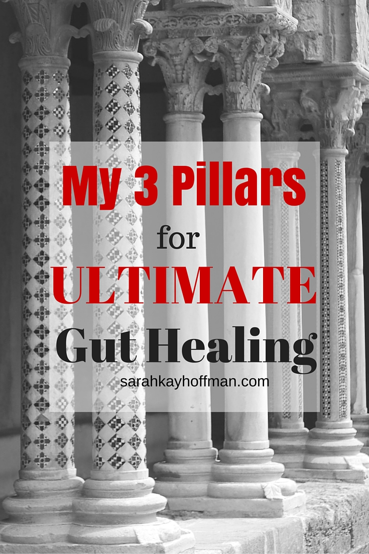 21-Day New Year, Wellness You Program My 3 Pillars for Ultimate Gut Healing sarahkayhoffman.com