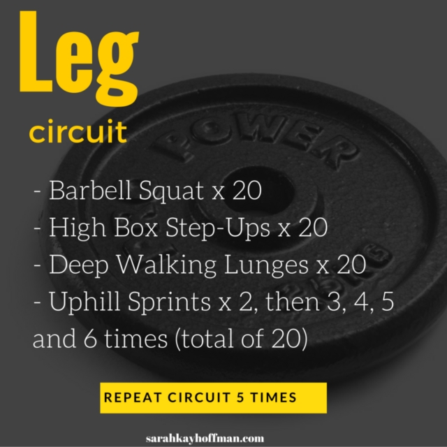 Leg Circuit Fitness Workout Sarahkayhoffman.com Spartan Workout