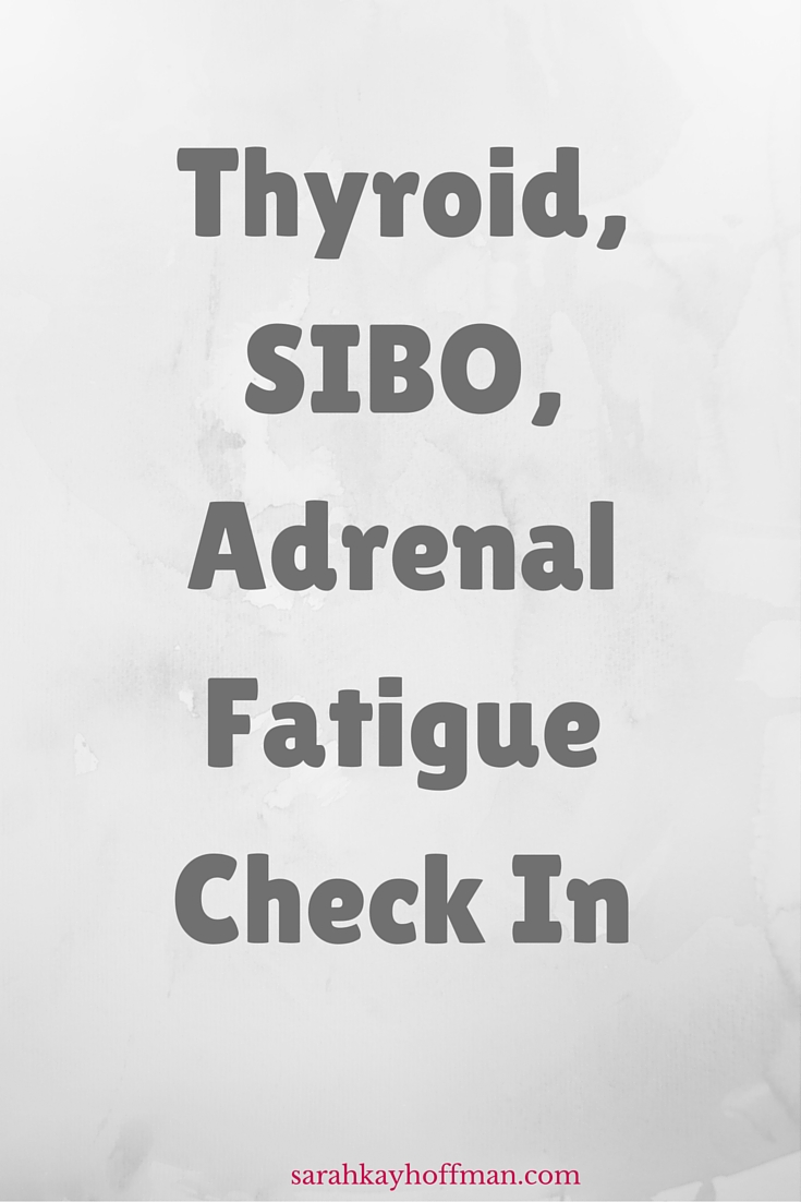 Thyroid, SIBO, Adrenal Fatigue Check In sarahkayhoffman.com