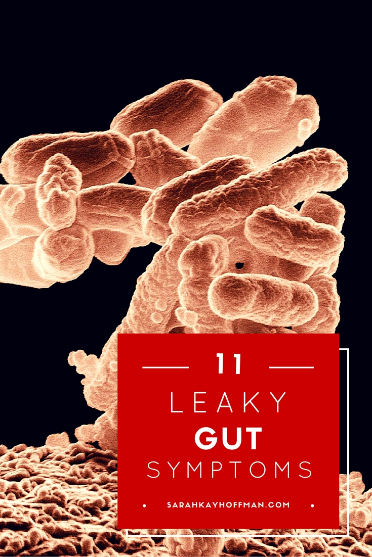 Leaky Gut Syndrome 11 Leaky Gut Symptoms sarahkayhoffman.com