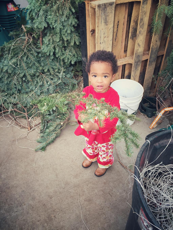 The Christmas Spirit Picking out Christmas Tree sarahkayhoffman.com Samarah