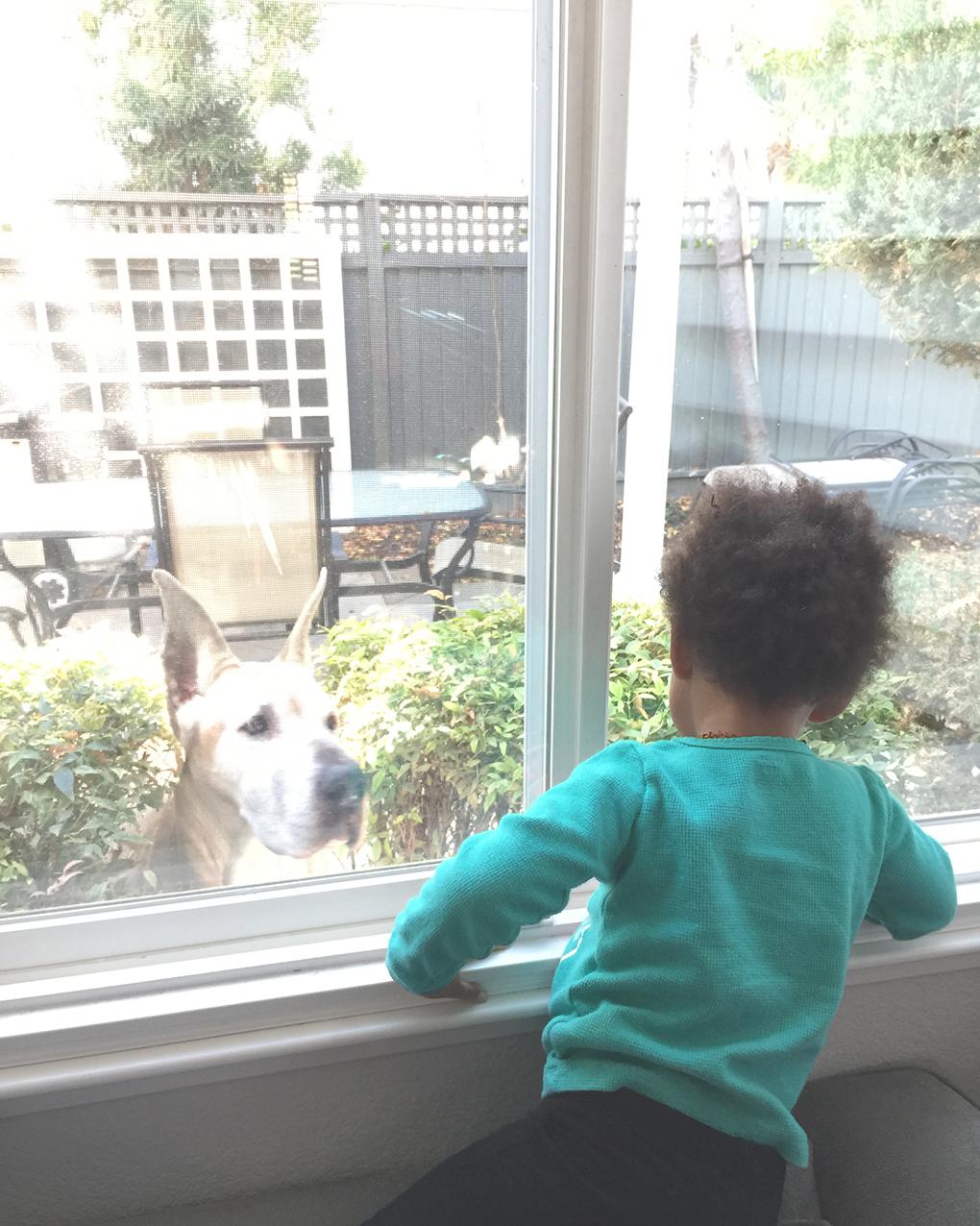 WWDW - Number 3 Reagan window sarahkayhoffman.com