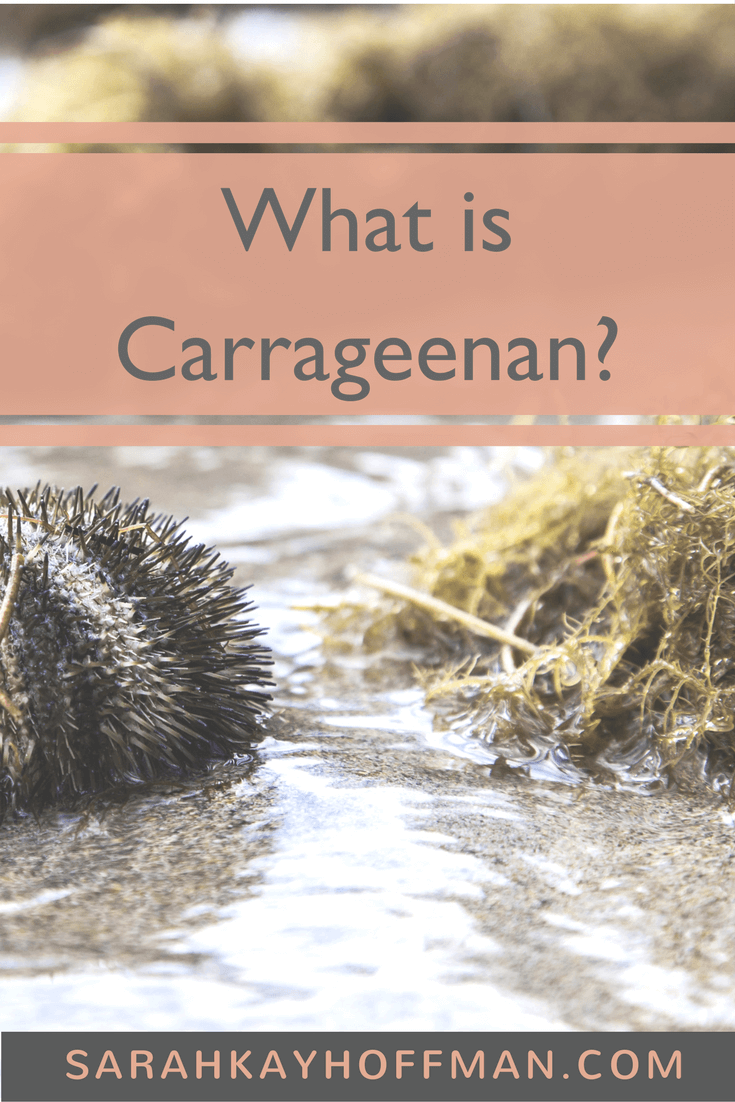 What is Carrageenan sarahkayhoffman.com