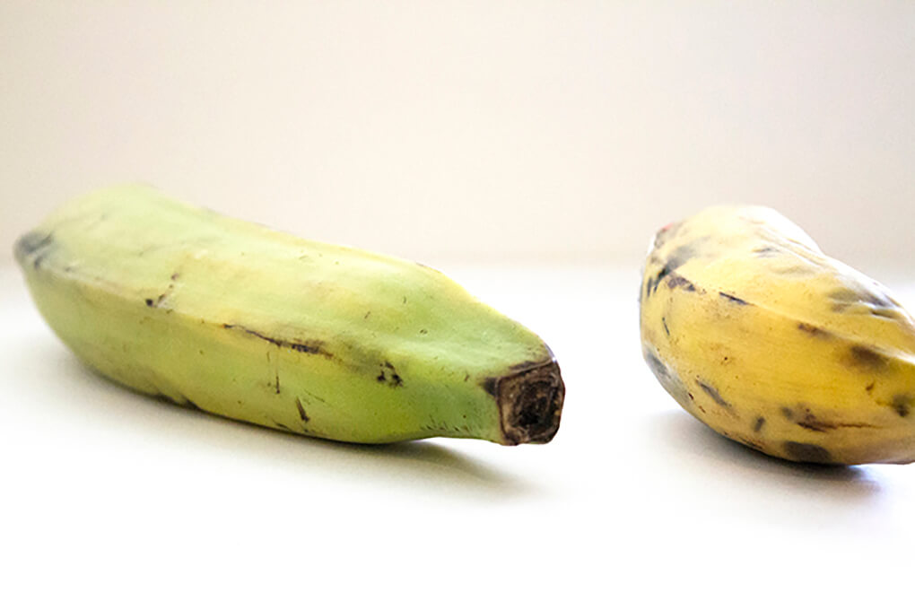 Is This Resistant Starch Helping or Hurting Your Gut? Green vs. Yellow Plantain sarahkayhoffman.com