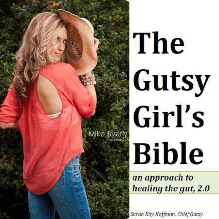 Travel and Convenience Snack Guide Companion plu The Gutsy Girl's Bible an approach to healing the gut sarahkayhoffman.com