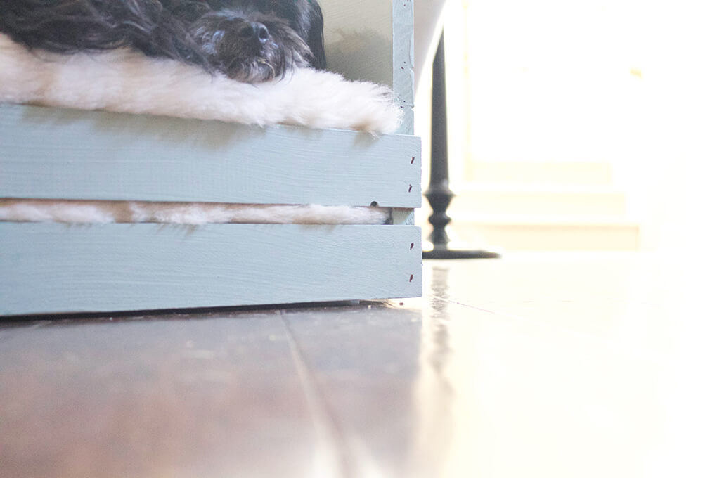 DIY Farmhouse Wooden Crate Bed for Puppy sarahkayhoffman.com Front of Crate