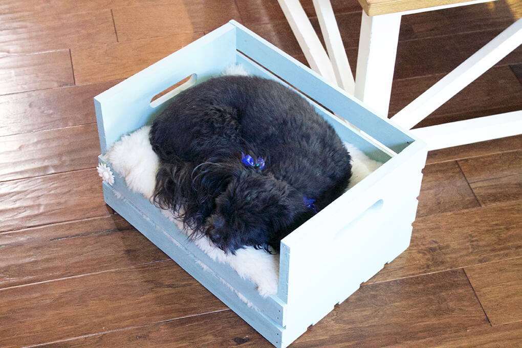 DIY Farmhouse Wooden Crate Bed for Puppy sarahkayhoffman.com In Crate