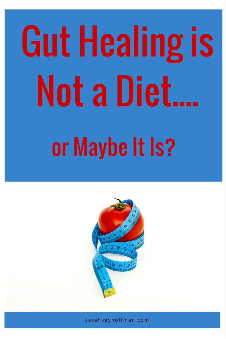 Gut Healing is Not a Diet...or Maybe It Is? sarahkayhoffman.com