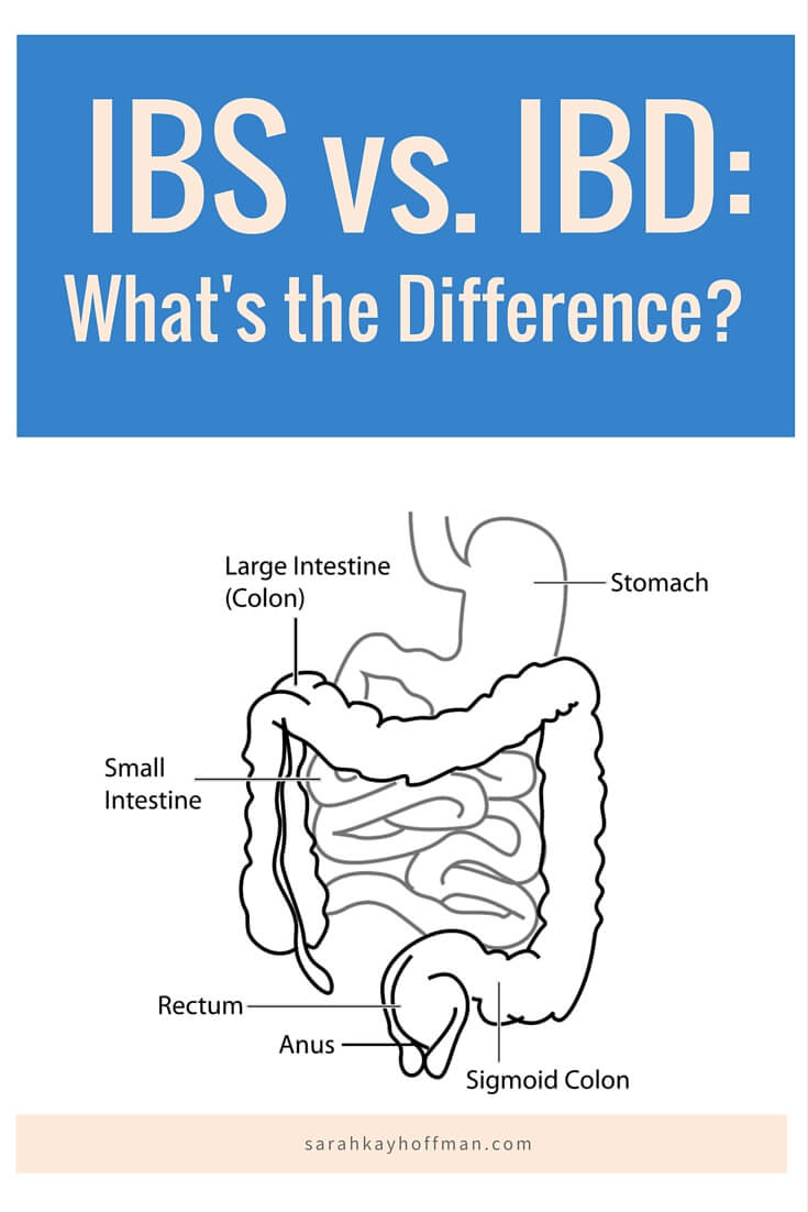 What's the difference agutsygirl #IBS #IBD #guthealth