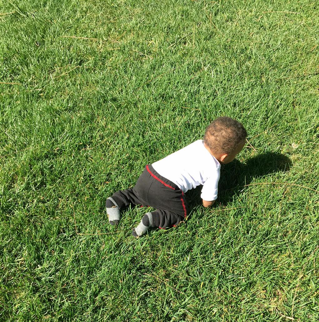 A Normal Family sarahkayhoffman.com Isaiah crawling adoption