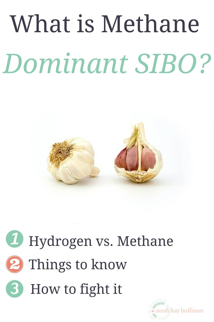 What is Methane Dominant SIBO sarahkayhoffman.com