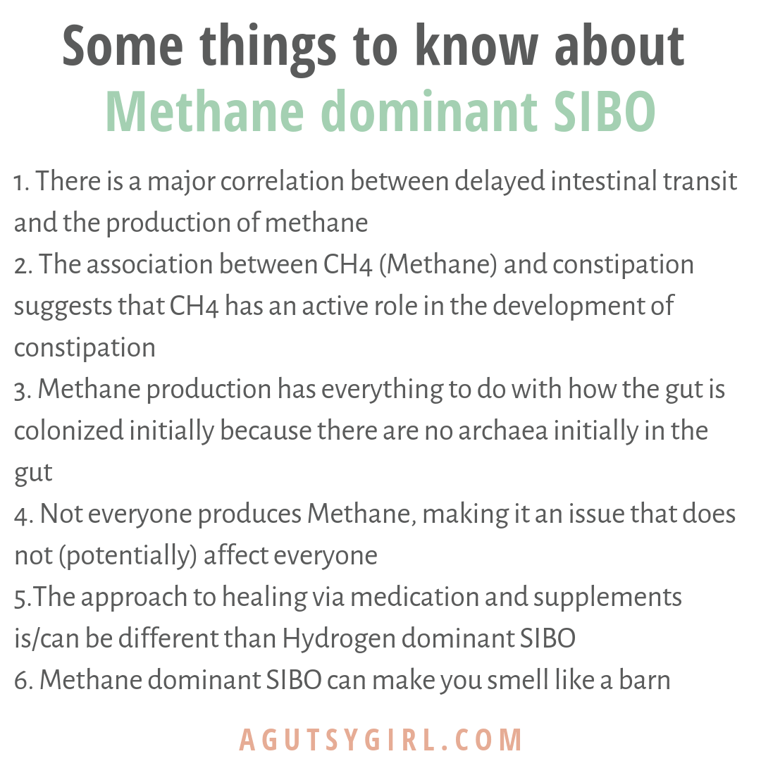 What is Methane Dominant SIBO some things to know agutsygirl.com #SIBO #lowfodmap #guthealth #methane